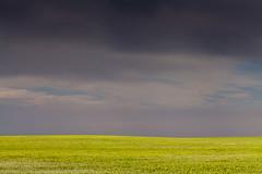 Great Plains (Jesse4870) Tags: summer storm colorado farm wheat great front denver plains range