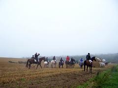 Nun wird der Schlu gemacht (marion streich) Tags: horses field fog nebel feld horsemen reiter pferde helsen nordhessen waldeckfrankenberg fuchsjagd waldeckerland endederfuchsjaged