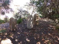 the standing stones / as pedras de pé (tanetahi) Tags: mygarden brisbane australia menhirs standingstones sandstone helidon tanetahi