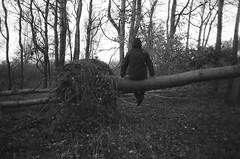 alone in the woods (subway rat) Tags: trip film nature bike analog self 35mm copenhagen denmark photography photo woods shoot alone grove olympus september shooting birch danmark københavn fomapan 2013 kalvebod μmjuii fælled