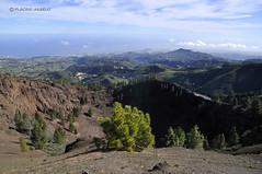 Caldera de los pinos de Gldar (PLACIDO ARBELO) Tags: de los negro caldera gran pinos isla canaria crter gldar montan