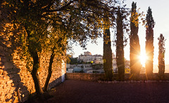 Sunrise Terrace (Philipp Klinger Photography) Tags: autumn light shadow sky sun house mountain france building tree fall church nature wall architecture backlight sunrise landscape town leaf nikon frankreich counter angle terrace hill wide wideangle paca cypress provence leafs gordes gravel d800 counterlight provencealpesctedazur nikond800