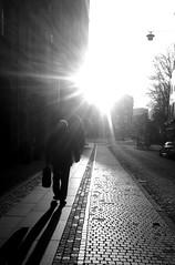 sunny walk (hansahlborg) Tags: streetphotography malmö flickrandroidapp:filter=none engelbrektsgatan17b