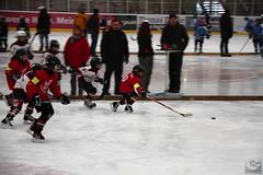 FASS_BAM_250114_0020inet (Cornerbreaker Pictures) Tags: berlin bambini mk2 halle nord saison eishockey fass esv odm kleinstschler 20132014