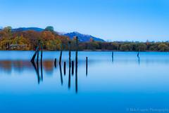 Derwentwater (bobf62) Tags: autumn lake reflection tree fall nature water landscape nikon lakes lakedistrict foliage cumbria derwentwater nikkor keswick copse d600 bobfogerty
