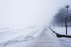 Epic fog / Helsinki (Mikko Miettinen) Tags: winter sea snow fog finland helsinki couple day walk perspective baltic kaivopuisto karuselli sumu thickfog sumussa kompassi pwwinter helsinkiatwinter
