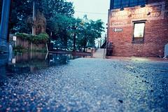 Old Town night Flooded-08.jpg (greauxe) Tags: longexposure rain flood 35mmfilm nightphotos streetphotos oldtownalexandria leicam6 filmcameras kodakektar100 voigtlander21mmcolorskopar dcstreetphotos filmexplosionblogspotcom