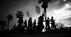 Marathon Barcelona (2) (elgunto) Tags: marathon barcelona race sport poblenou silhouettes blackwhite highcontrast bw street people sonya7 nikon2035 ai digitalphoto manuallense