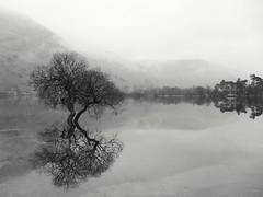 Lake District (noeliaalda) Tags: lake niebla foggy reflextion reflejo