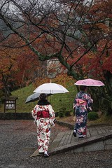Rushing... (Syahrel Azha Hashim) Tags: autumnseason autumn worldheritage sony 2016 fall holiday simple kyoto details pointofview a7ii umbrella unesco kimono shrine japanese dof tree rushing touristattraction sonya7 35mm season humaninterest people handheld wet colorimage vacation kiyomizuderatemple prime light fallseason naturallight seasonal colorful umbrellas beautiful travel syahrel getaway shallow colors traditionalclothing traveldestination raining japan detail