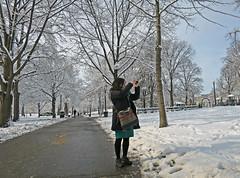 BostonShootaSnowyDome (fotosqrrl) Tags: boston massachusetts streetphotography urban snow bostoncommon publicpark path photography photographer
