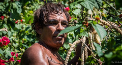 2016 - Mexico - Zihuatanejo - Cocoanut Man - 1 of 3 (Ted's photos - Returns Late November) Tags: 2016 cropped mexico nikon nikond750 nikonfx tedmcgrath tedsphotosmexico vignetting zihuatanejo zihuatanejoguerrero hotelcatalina catalinabeachresort male man rope bokeh