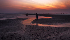 Specs Of Life.......!! (sandy_photo) Tags: gangasagar sunrise ganges bayofbengal sea beach outdoor