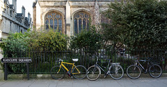 Radcliffe Square (James Thomas 10375) Tags: radcliffe square oxfordshire oxford city bike bicycles bush bushes sign post university church golden hour spring time evening dusk windows wheels spokes blossom stained glass pavement people canoneos5dmarkiii canonef2470f28liiusm