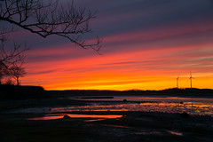 DSC00761.jpg (hye tyde) Tags: sony a6000 massachusetts north shore ipswich greatneck sunset