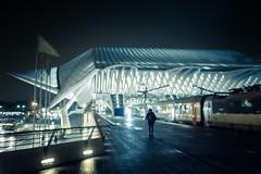Le flou du futur... / Blurred Future (Gilderic Photography) Tags: liege liegeguillemins station architecture blur night nuit lights mood canon g7x gilderic city