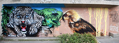 Andrew Wallas  •  Atom Ludik (HBA_JIJO) Tags: streetart urban graffiti vitry vitrysurseine animal art france hbajijo wall mur painting aerosol oiseau peinture bird paris94 spray mural bombing urbain félin andrewwallas atomludik fauve