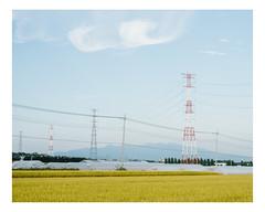 takasaki (Mériol Lehmann) Tags: vscofilm rice landscape gunma poles fields greenhouses pylone landscapes paddyfields japan topographies takasakishi gunmaken jp