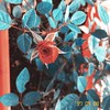 shifting (meeeeeeeeeel) Tags: natureza nature jardineira jardim garden surrealcolors iphone iphoneography kissimmeehipstapak hipstamatic squareformat redflower florvermelha rosavermelha redrose botãodeflor flower flor botãoderosa rosebud rose rosa