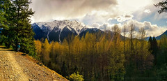 mountainbiking pemberton tara seatosky mt currie mountain... (Photo: tristanrayner.com on Flickr)