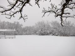 IMG_2815 (sjj62) Tags: s90 snow snowscape lith lakeinthehillsil winter winterscape