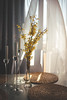 Spring breeze (sue.konvalinkova) Tags: breeze goldenchain spring inside interior table nikon 35mm soft morning sovenir