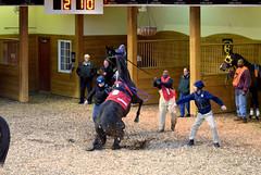 2017-03-30 (21) r2 #1 Henrys Way in the paddock at CTR (JLeeFleenor) Tags: photos photography charlestown westvirginia wv westvirginiaracing wvracing hollywoodcasino horses thoroughbreds equine equestrian cheval cavalo cavallo cavall caballo pferd paard perd hevonen hest hestur cal kon konj beygir capall ceffyl cuddy yarraman faras alogo soos kuda uma pfeerd koin حصان кон 马 häst άλογο סוס घोड़ा 馬 koń лошадь paddock dancer actingup
