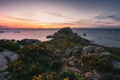 l'heure des Ajoncs (Francois Le Rumeur) Tags: paysage seascape landscape nature ocean bretagne le diben baie de morlaix nuages clouds côte sunset coucher soleil pointe primel nikon d810 rocher rocks rock rochers mer