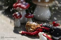 alice ! (photos4dreams) Tags: alicep4d barbie mattel doll toy photos4dreams p4d photos4dreamz barbies girl play fashion fashionistas outfit kleider mode puppenstube tabletopphotography aliceinwonderland aliceimwunderland fairytale märchen miawasikowska timburton