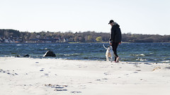 At the Beach (Mona_Oslo) Tags: beach sand dog people sea balticseahörvik stranger easter spring coastline monajohansson sweden blekinge