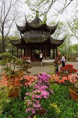 Pagoda (marko.erman) Tags: flowers garden suzhou jiangsu china harmony unesco world heritage site classical sony jardin worldheritagesite pagoda architecture tower eaves