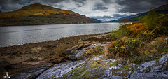 Postcard from Loch Long - Nr Arrochar (Rotundus III) Tags: scotland scottish scottishscenery scottishhighlands sky sea canon canon6d canondslr clouds canonlseries coast ef ef28300mml eos seaweed seaside nikon