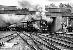 """City of Wells"" arriving at Bolton St Station, Bury. (steve.gombocz) Tags: blacknwhite greyscale monochrome blackwhite bw flickrbw bwflickr blackwhitephotos blackwhitephotography blackandwhite bwphotographs bwphotography photosinblackandwhite bwpictures flickraddict flickraddicts blackandwhitephotographs out outandabout flickr exploreflickr bury railway steam railwaystation smoke steamlocomotives streamtrain steamtrain uksteamtrain uksteam steamengines locomotives explorebury buryblackandwhite flickrbury zwartwit neroebianco sortoghvid mustavalkoinen svarthvitt svartoghvitt svartochvitt pretoebranco noiretblanc schwarzundweiss negroyblanco schwarzweiss noirblanc negroblanco pretobranco nerobianco nikon nikonusers nikond810 nikoneurope nikoncamera nikon240120mmf40 nikonlens photography trainphotos"