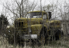 Yellow (explore) (unknown quantity) Tags: abandoned baretrees overgrowth sky cloudy truck neglect winter fadedpaint