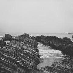 Sea Strata (Chelsea Branch) Tags: filmisnotdead staybrokeshootfilm 35mm 120mm ilfordpanfplus50 ilford ilfordpanf california lubitel166b lubitell166b landscape seascape grainisgood blackandwhite