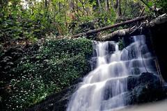 waterfall (kyry2010) Tags: waterfall cascata acqua water landscape paesaggio long exposure lunga esposizione cannobio