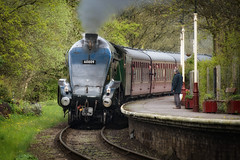 60009 Union of South Africa (Mister Oy) Tags: train steam davegreen oyphotos ©oyphotos loco 60009 union south africaeast lancs railwayelrsummerseatstationarrivingarrivalrailwaya4class a4 lner