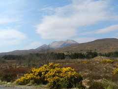 Beinn Eighe(3,310ft), Kinlochewe, Highlands of Scotland, May 2017 (allanmaciver) Tags: beinn eighe torridon mountains range peaks snow scree gorse bush moor scotland highlands scenery weather blue sky warm haze trees allanmaciver