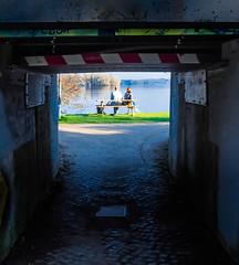 into the light (claudia.kiel) Tags: plön deutschland germany de see lake seeufer unterführung underpass schatten licht shadow light lakeside