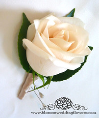 cream-rose-buttonhole-wedding (Blossom Wedding Flowers) Tags: flowers wedding roses rose bride champagne cream pearls bouquet satin buttonhole posy vendela blossomweddingflowers