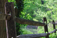 Fenceposts (Rich Renomeron) Tags: greenbelt fencepost canonef50mmf18ii canoneos60d