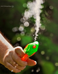 Go ahead ... make my day! (RichardBeech) Tags: playing game water garden toy outdoors gun bokeh relaxing sunny pistol drenched tsc waterfight splashing dirtyharry outdooractivity goaheadmakemyday squirting sundaychallenge canon5dmarkii richardbeech rdb75 wwwrichardbeechphotographycom