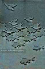 As Above So Below #1 (Andrea Kollo Photography) Tags: sculpture fish bird nature birds geese fineart naturephotography naturephoto fineartphotograph natureprints andreakollo andreakollophotography natureartprints sculpturalfineart andreakollofineart
