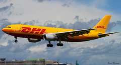 DHL A300-600F (birrlad) Tags: ireland dublin sunlight up airplane airport haze taxi aircraft aviation airplanes line landing heat approach takeoff runway airliner