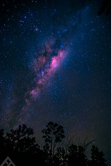 Twinkle Twinkle Little Star (ftan99) Tags: trees night way star nikon angle wide astrophotography milky lightroom d700