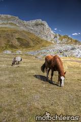 Pyrenees_04