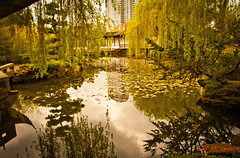 2011 - Vancouver - Dr. Sun Yat-Sen Classic Chinese Garden (Ted's photos - For Me & You) Tags: park reflection water vancouver chinesegarden vancouverbc 35faves cans2s tedsphotos drsunyatsenclassicchinesegarden dryatsen