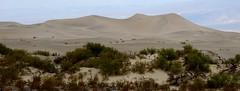 Death Valley Dunes 2 (Apurva Madia) Tags: california usa hot america landscape death sand nikon dune scenic dry valley arid d800 nikond800