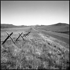 I (Heart) Montana (JimShootsFilm) Tags: road blackandwhite foothills west 120 film field analog america fence mediumformat square blackwhite highway montana ditch unitedstates empty unitedstatesofamerica squareformat barbedwire bigsky analogue prairie plains sunriver ilford barbedwirefence ilfordpanf sideoftheroad panf bigskycountry westernmontana eastslopes bwfp