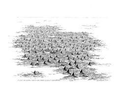 129-sharks (bezembinder) Tags: drawing fuerteventura sharks rotring bezembinder fineliner